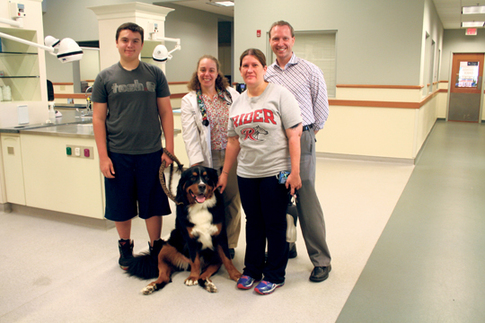 For pet blood bank, little donations go a long way