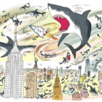 web1_Sharks-Eliane-.jpg